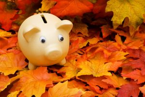 fall-skip-piggy